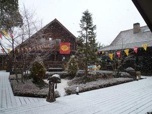 雪降り始め.JPG